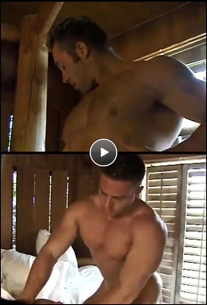 muscle gay males video